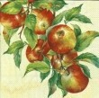 Serwetka do decoupage APPLE HARVEST 4029